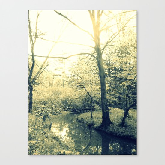 Boggy Sun Canvas Print