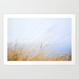 04. Britain breeze, Bretagne, France Art Print