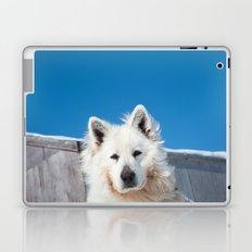 White Husky 2 Laptop & iPad Skin