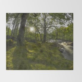 Morning River Sun Throw Blanket