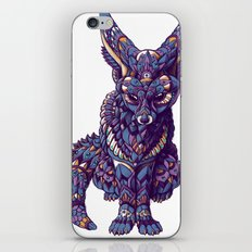 Fennec Fox (Color Version) iPhone & iPod Skin