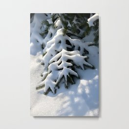 Pinetree covered with snow | Winter artwork | fine art photo print in the netherlands | nature and travel photograpy Metal Print