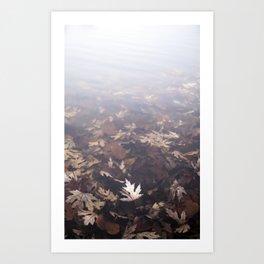 Vanishing Art Print