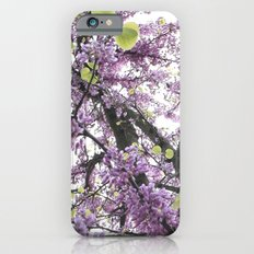 autum iPhone 6s Slim Case