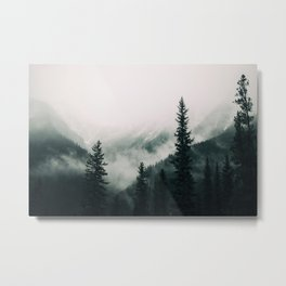 Over the Mountains and trough the Woods -  Forest Nature Photography Metal Print