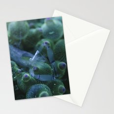 Anemone Shrimp on Bubble Tip Anemone Stationery Cards
