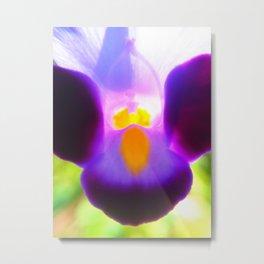 Beautiful Purple Flower Metal Print