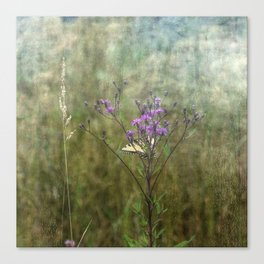 Eastern Tiger Swallowtail Butterfly on Ironweed Wildflower II Canvas Print