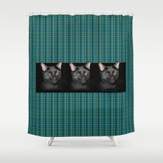 Three black Cats on Plaid Background Shower Curtain