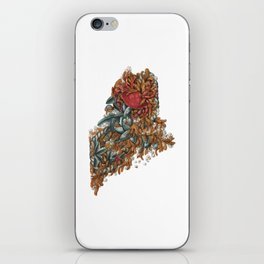 Maine (intertidal zone) iPhone Skin