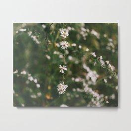 Wildflowers on Film Metal Print