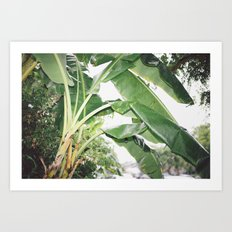 Rain in LA Art Print