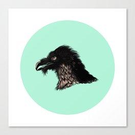 The Vulture. Canvas Print