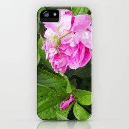 Pivoines dans le jardin iPhone Case