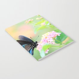 Spicebush Swallowtail Butterfly on Lantana Notebook