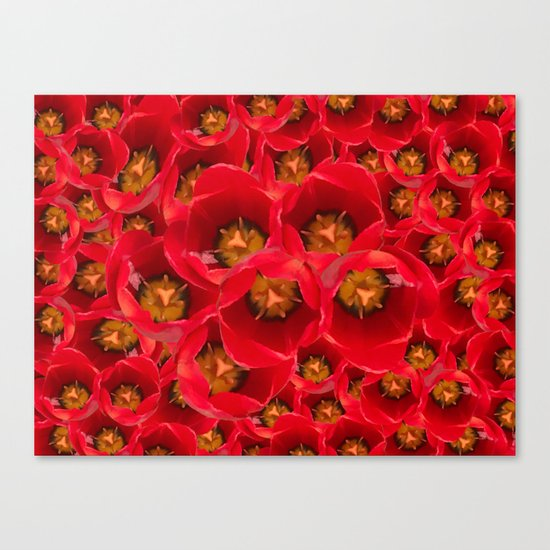 Venetian Red Tulips Canvas Print