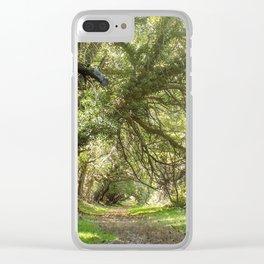 Wye Island Tree Tunnel | Maryland Clear iPhone Case
