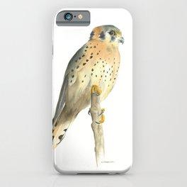 american kestrel iPhone Case