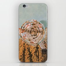 Habitat IV iPhone & iPod Skin