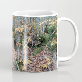 Chestnut Forest in the Fall Coffee Mug