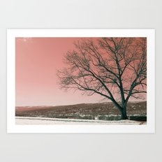 Sunset Park photo landscape Art Print