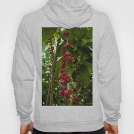 Red Flowers with Green leaf background Hoody