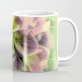 Soft Hydrangea Flower Modern Country Farmhouse Art A422 Coffee Mug