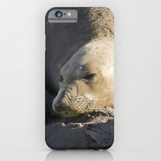 Elephant Seal: Contentment Slim Case iPhone 6s