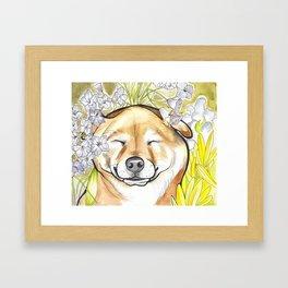 Jay Jay the happy Shiba Framed Art Print