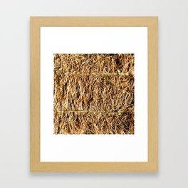 Hay Bale Framed Art Print