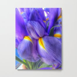 Irises For Mom Metal Print