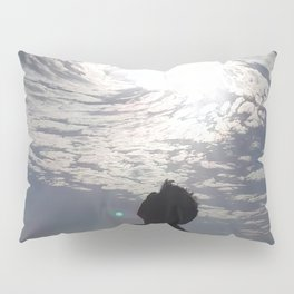 Oh Beautiful You Pillow Sham