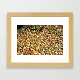 on the trees or on the ground, i love leaves all around Framed Art Print