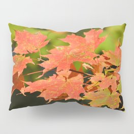 Fall Autumn Maple Leaves Red Orange Autumnal Colors Pillow Sham