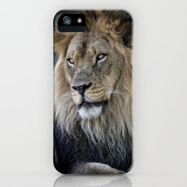 In the Jungle, the Mighty Jungle iPhone Case
