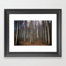 Autumn hike Framed Art Print