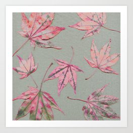 Japanese maple leaves - apricot on light khaki green Art Print