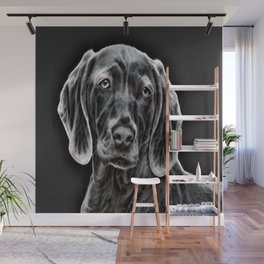 Weimaraner - The Gray Ghost Wall Mural
