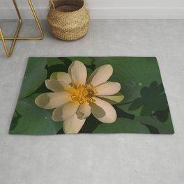 American Lotus - Nelumbo lutea Rug
