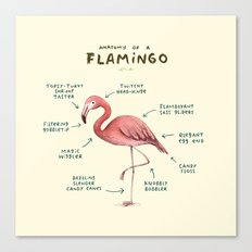 Anatomy of a Flamingo Canvas Print