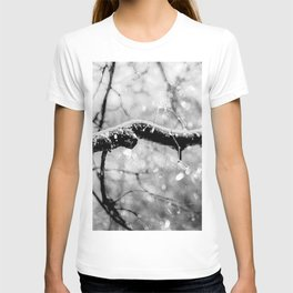Old Linden Tree On A Rainy Day Of Autumn T-shirt