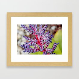 If I Were A Flower Framed Art Print