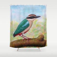 Fairy Pitta Shower Curtain