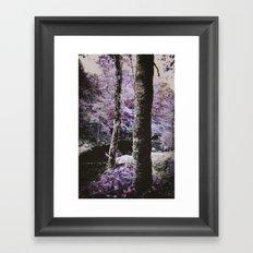 Violet Autumn  Framed Art Print