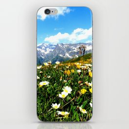 Summer in the Alps iPhone Skin