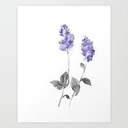 Ceanothus Botanical Watercolor Art Print