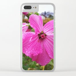 Lavatera flower with water drops in the morning Clear iPhone Case