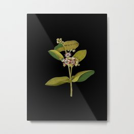 Asclepias Gigantea Mary Delany Delicate Paper Flower Collage Black Background Floral Botanical Metal Print