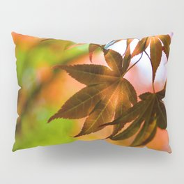 Japanese Maple in Garden - Colors of Autumn Print - Coral Foliage Wall Art - Nature Photography Pillow Sham