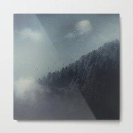 ashen forest - alpine forest in morning fog Metal Print